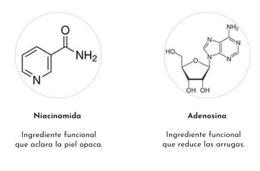 Ingredientes activos THELAVICOS Biorepair Wrinkle Cream 1