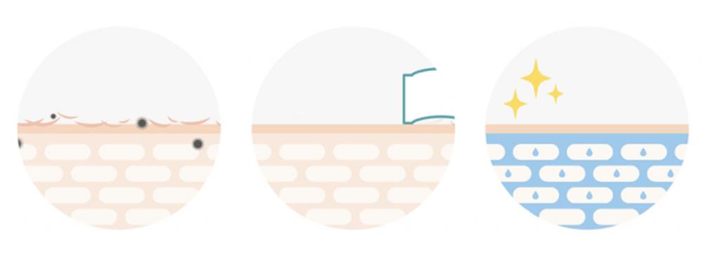 Ilustración del cuidado de la piel del Dokdo Toner
